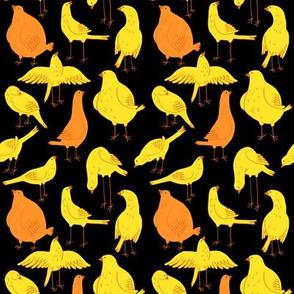 Canary Black