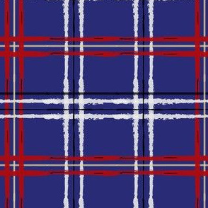 Artist Plaid_ Red and Blue