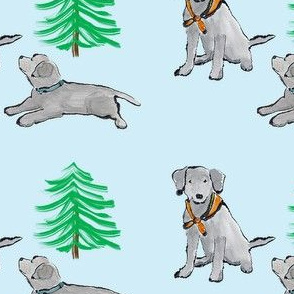 Lab_Puppies With Pine Tree