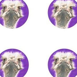 Ostrich_purple_dot