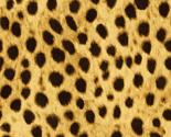 Cheetahfur_thumb