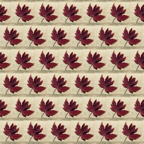 Maple Leaf and Parchment