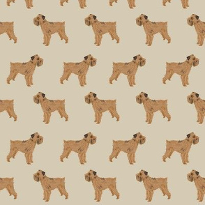 brussels griffon dog fabric standing dogs khaki fabric neutral dog design pet dog fabric