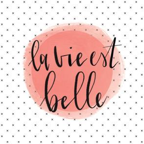 la vie est belle baby blanket // incarnat