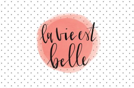 la vie est belle lovey // incarnat fabric by ivieclothco on Spoonflower - custom fabric