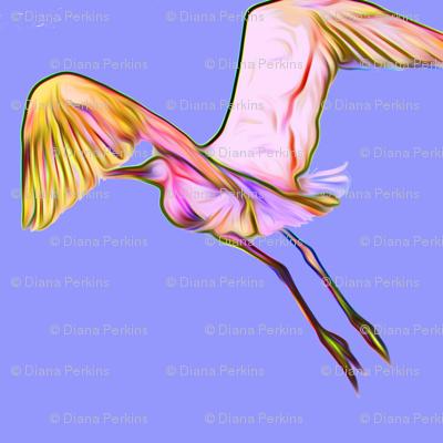bird on purple