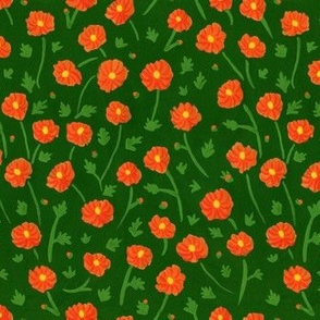 Cosmos Flora
