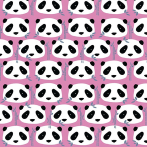 pandas__purple___blue