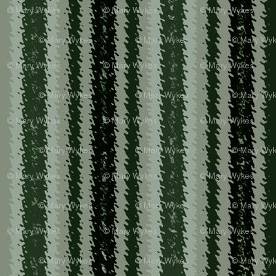 JP17 - Sage Green Variegated Stripes