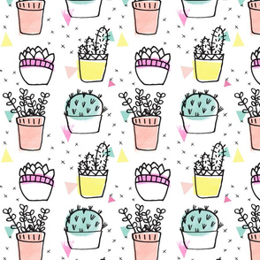 Pot plants - mint, pink, peach, yellow