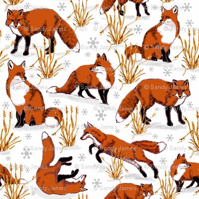 red_fox_snow_day