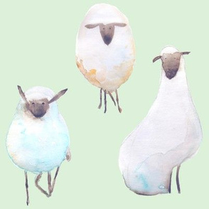 Counting Sheep - Minty Green Background