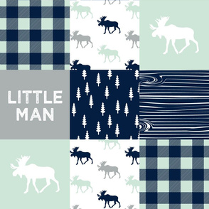 little man patchwork quilt top || the northern lights collection