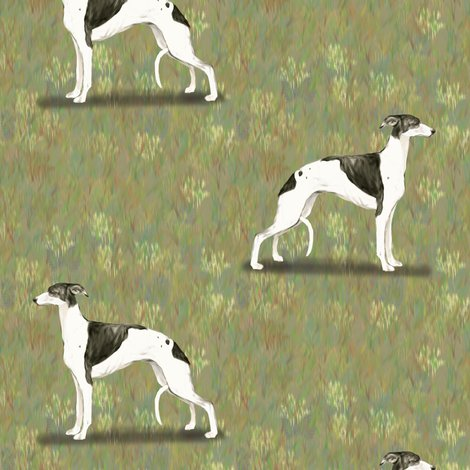 Black_and_white_whippet_rev_shop_preview