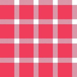 Buffalo Check Gingham Red - Christmas 16'