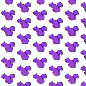 Purple Squirrel on White