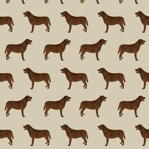 chocolate lab fabric labrador retriever fabric design dog dogs print dog fabrics design