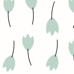 Tulips - mint