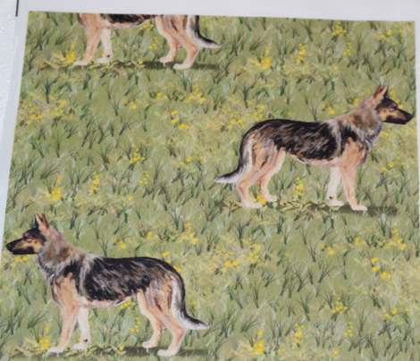 German Shepherd Dog in Wildflower Field yellow