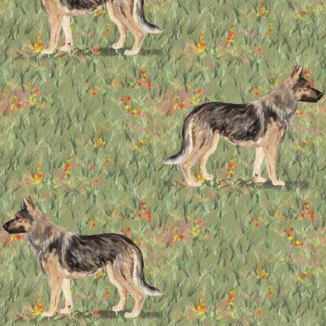 Rrrrgerman_shepherd_in_wildflower_field_red_shop_preview