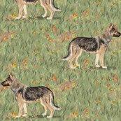 Rrrrgerman_shepherd_in_wildflower_field_red_shop_thumb