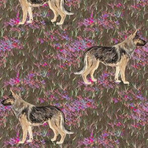 German Shepherd Dog in Wildflower Field pink