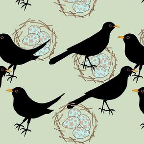blackbird big print