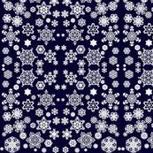 Starry SnowyNight