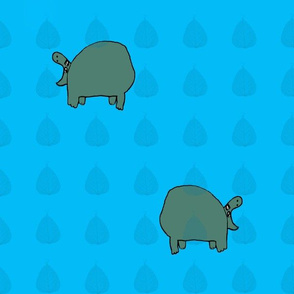 Hippo Blues