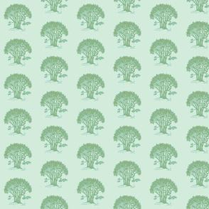 Swing Oak, 1-ch-ch