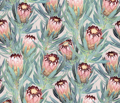 Pale Painted Protea Neriifolia - large version fabric by micklyn on Spoonflower - custom fabric