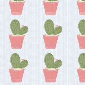 Little Green Cactus