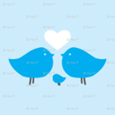 love-birds-blue-small