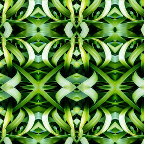 Twist and shine -greens