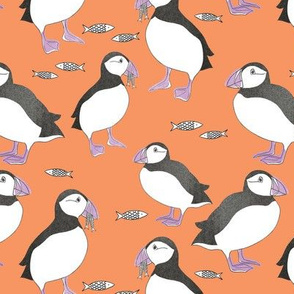 Puffins - orange & purple