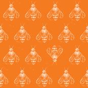 Honey bee I love thee // orange