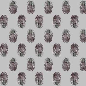 octopus in grey