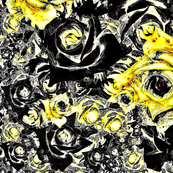 Roses - yellow & black