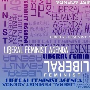 Liberal Feminist Agenda In Rainbo