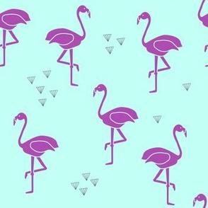 Flamingo by the waterhole