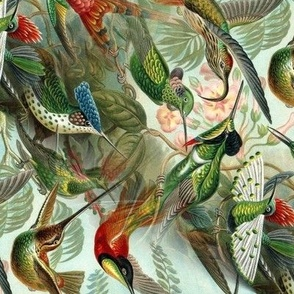 Vintage Hummingbirds (Small/Rotated)