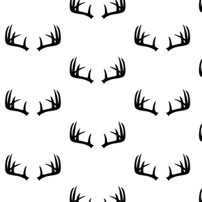 deer20antlers