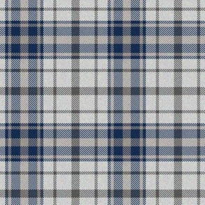 Trendy Blue and Gray Plaid