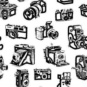 Stylized Vintage Cameras