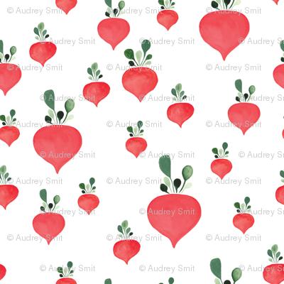 Rain of radishes