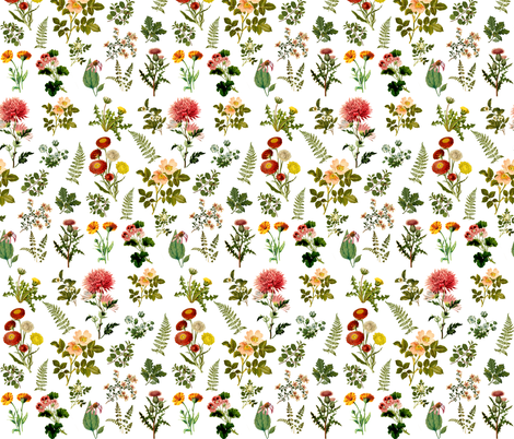 Lil Botanical Garden fabric by shopcabin on Spoonflower - custom fabric