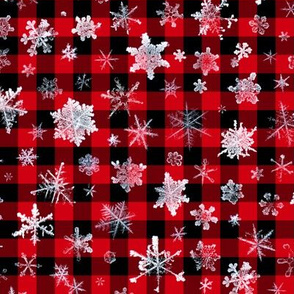 "large snowflakes on 1/2"" buffalo check"