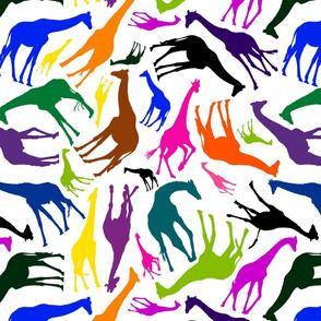 Como_Zoo_Giraffe
