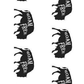 Roam Free Bison 90