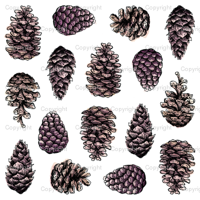 Pinecones-wrappingpaper_preview